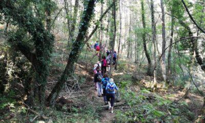 , Ορειβατικός Καλαμάτας: Εξόρμηση στην Βλαχοκερασιά και στο δάσος της Σκιρίτιδας