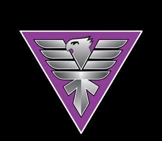 , H Ακαδημία Hawks ανοίγει φτερά και στο Πεταλίδι
